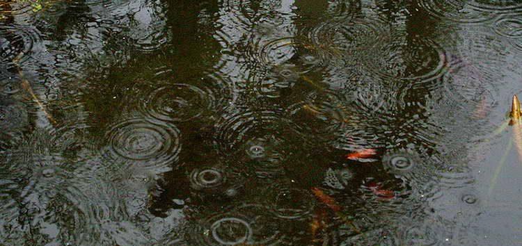 Променливо облачно време, попладне со услови за пороен дожд