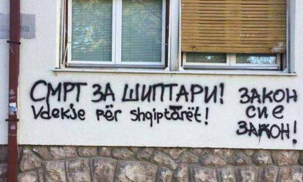 Малолетник и 19-годишник ги испишале графитите во Битола