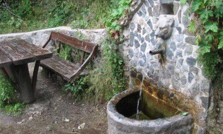 Водата од јавните чешми во с.Ореовец и с.Беловодица не е исправна за пиење
