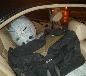 Запленети 91 килограм марихуана во Кичево, тројца приведени