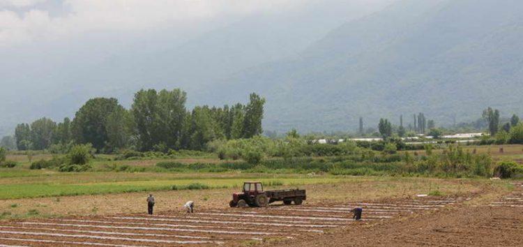 Барања за земјоделски субвенции може да се поднесуваат до 15 мај