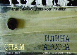 Изложба на Илина Арсова во прилепскиот Центар за култура