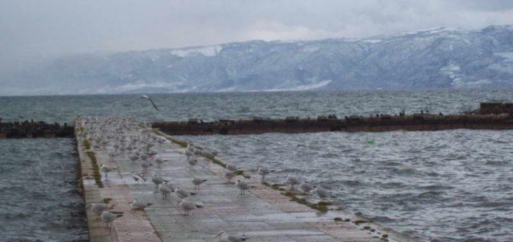 Охридско и Дојранско Езеро над дозволениот максимум