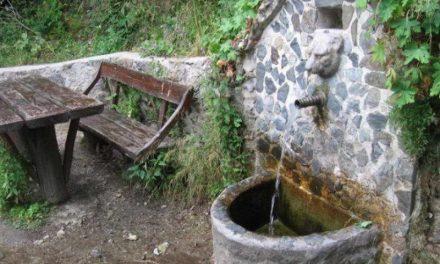 Водата од Шемкова чешма не смее да се користи за пиење