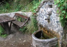 Неисправна водата за пиење во месноста Ѓумушица