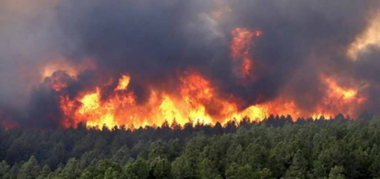 Битола: Зголемена опасност од пожари поради високите температури
