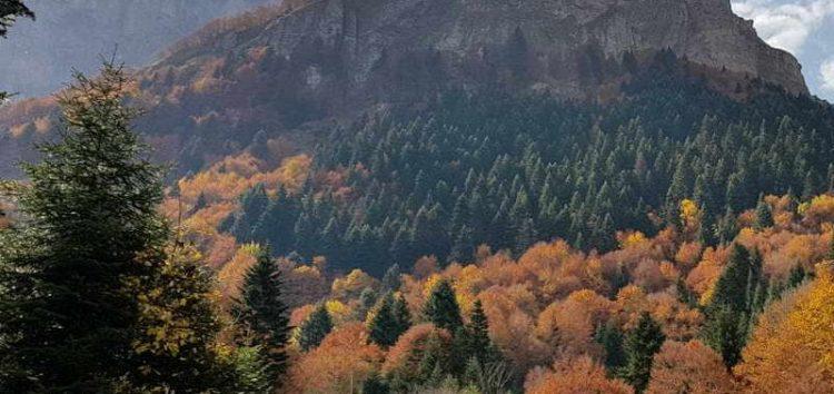 """Лешница – """"Швајцарија на Шара"""" го одзема здивот со боите и пределите"""