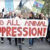 Протест на организациите за права на животните