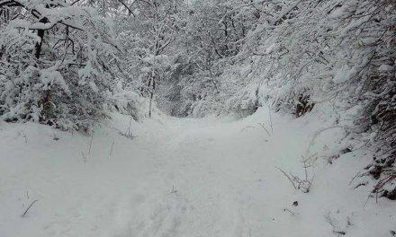 Денеска студено со слаби врнежи од снег и засилен ветер