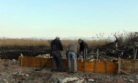 """""""Охрид СОС"""": Бетонски огради на брегот и среде изгорената трска кај Струга"""