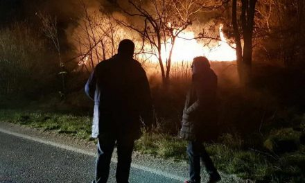 Локализиран пожарот што ја зафати околината на Битола