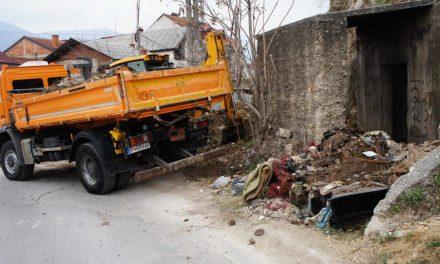 Јавните претпријатија ги чистеа депониите во Битола