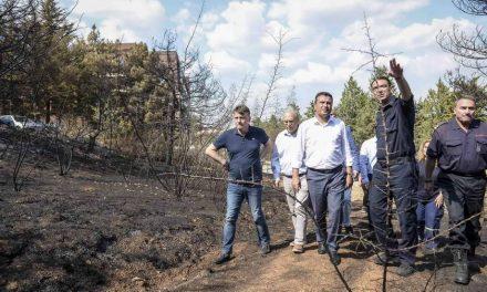 Заев: Ќе одговараат сите што потпалуваат, а ние ќе го обновиме шумскиот појас околу езерото Младост (видео)
