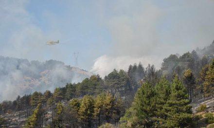 Нов пожар во околината на Прилеп, гори шумата над манастирот во село Селце