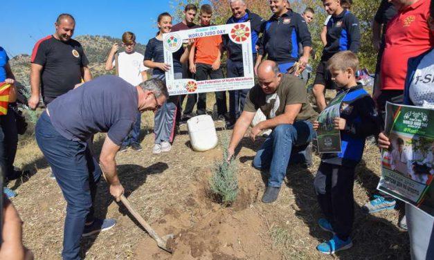 Со засадување дрвца, одбележан Светскиот ден на џудото