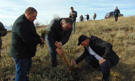 """Крушево: Акција за пошумување околу манастирот """"Св.Преображение"""""""