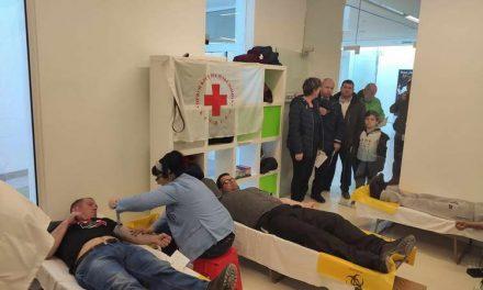 Крводарителска акција во Крушево