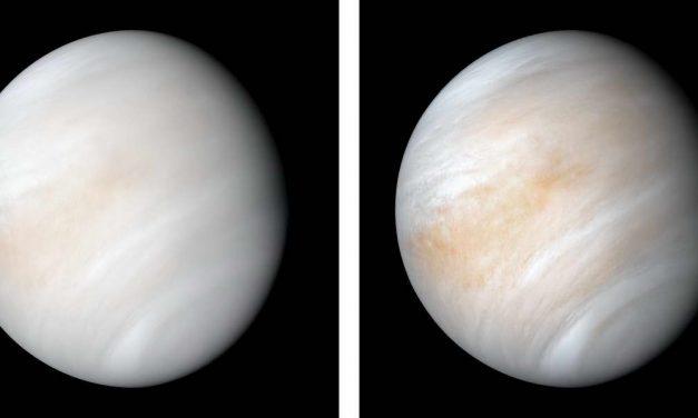 Пронајдени знаци на живот на Венера