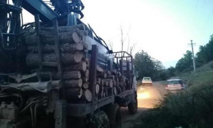 Откриени кампови, одземени возила, притворени 3 лица – акција на ОВР Прилеп за откривање дрвокрадци