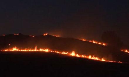 СВР Битола: Предизвикувањето на шумски пожар намерно или од невнимание, претставува кривично дело