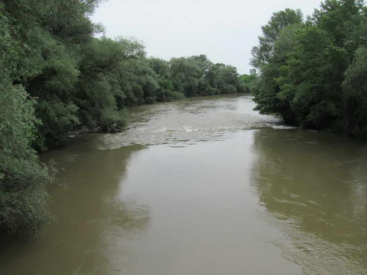 Пречистителните станици ќе ги исчистат реките од над половина од фекалиите што се влеваат во нив
