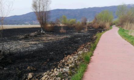 ДИЖС најави кривична пријава за палењето трски во Струшко