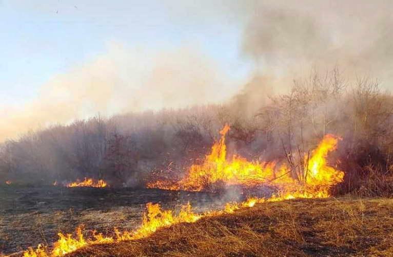 """Хеликоптери на Армијата го гасат пожарот над Пасјак, граничниот премин """"Богородица"""" по пожарот повторно во функција"""