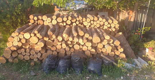 Засилени активности на ОВР Прилеп за спречување на бесправна сеча и транспорт на огревни дрва