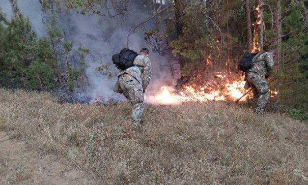 Армијата дејствува со војници и хеликоптери за гаснење на пожарите