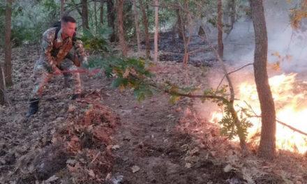 Приведен дебарчанец осомничен за подметнување шумски пожар