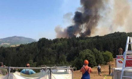 Во врска со пожарите во последното деноноќие ангажирани 588 полициски службеници