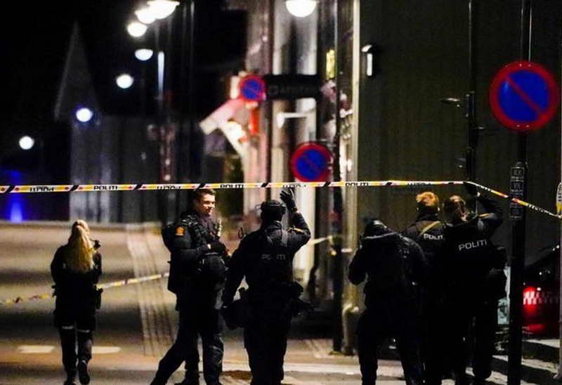 Петмина убиени во напад со лак и стрела во Норвешка