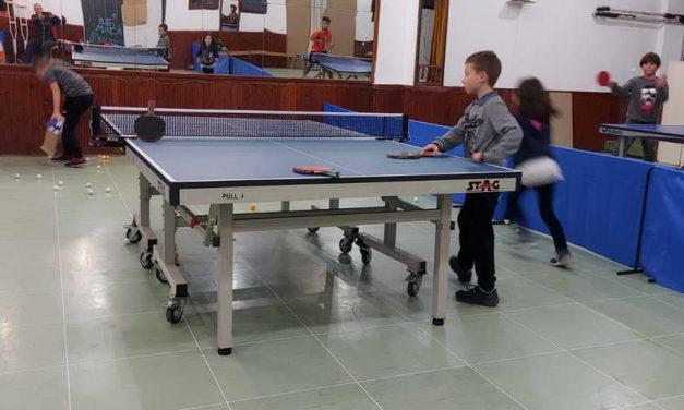 Пинг понгарската федерација со значајна инфраструктурна поддршка за младинските школи